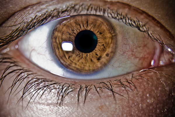ögon-120506_02-3